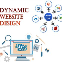 PHP/JavaScript Dynamic Website Designing Services, With 24*7 Support