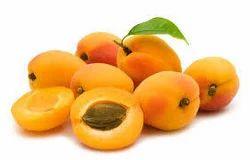 Apricot Oil Virgin Prunus Armeniaca
