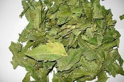 Neem Dried Leaves
