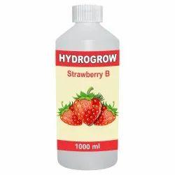 Hydrogrow Strawberry B