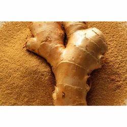50 kg Ginger Powder, Packaging: Packet