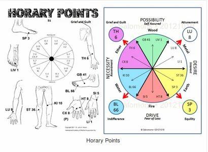Horary Astrology In Kasturbapath Patna Astro Nirvan Id 19009429173