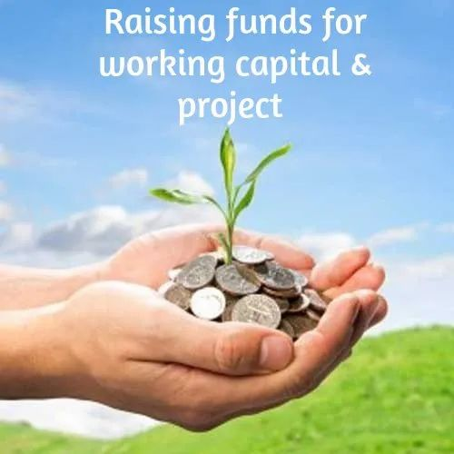 Raising Funds For Working Capital And Project Service