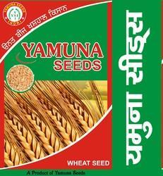Yamuna Wheat Seed (Pbw-677) for Agriculture, Pack Size: 40 Kg