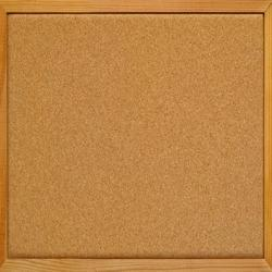 Cork Display Boards