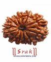 12 Mukhi Rudraksh Beads