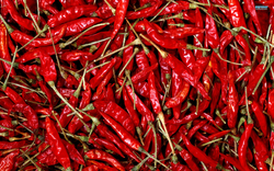 Organic Dry Chilly