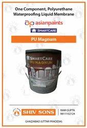 Asian Paints Smartcare PU Magnum (25 KG)