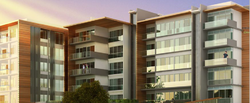 2BHK Commercial Flat Construction Service