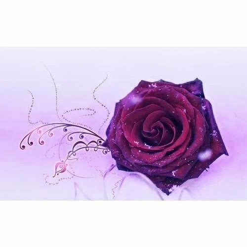 Paper Purple 3D Flower Wallpaper
