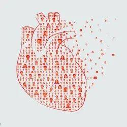 Non Invasive Cardiac Services