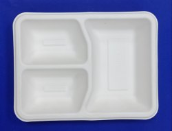 Biodegradable-Plate- 3 C.p