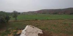 18 Bigha Land For Sale Near Alwar Rajasthan