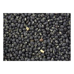 Natural Black Urad Seed, Packaging Size: 25 Kg, 50 Kg
