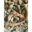 Dried Tamarind