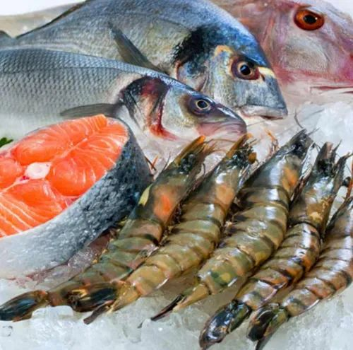 Seafood Industry Products - Seeds Storage Manufacturer from Chennai