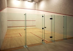Squash Court Glass Back Wall, Thickness: 10-12 mm