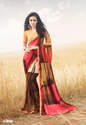 Multi Color Georgette Casual Saree