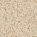 Sortexed Hulled Sesame Seeds