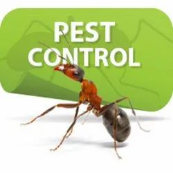 in Commercial One Time Pest Control Service, in Pan India