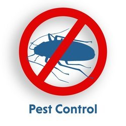 Pest Management Service