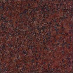 Ruby Red Granite At Best Price In India