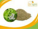 Extract 20%-60% Bacopasides Bacopa Monnieri Extract