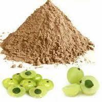Spray Dried Natural Amla Powder
