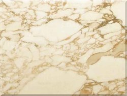 Calacatta Beige Marble, Application Area: Flooring, Thickness: 16 mm