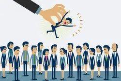 Job Consultancy