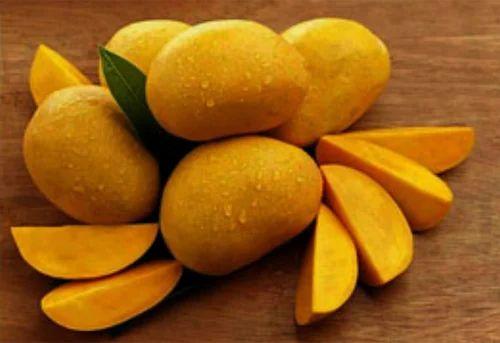 Alphonso Mangoes | Raien Fresh Product Pvt  Ltd  | Exporter in