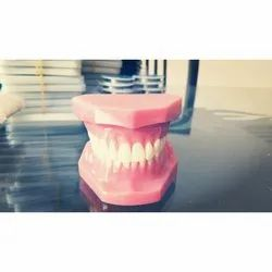 Dentures Or Removable Artificial Teeth Set - Perfect 32