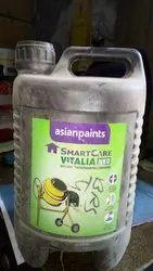Transparent Smartcare Vitalia Neo Asian Paint, Packaging Size: 10kg