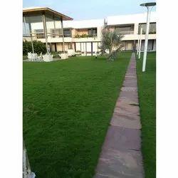 School , School & College Landscaping