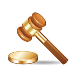 Legal Opinion Service