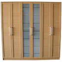 Designer Wardrobe Door