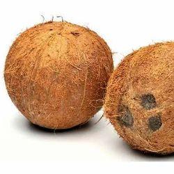A Grade Semi Husked Coconut
