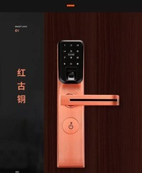 PACE Stainless Steel Smart Lock