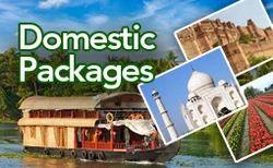 Domestic Travel Agency
