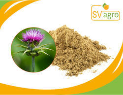 SV Agro 80% Silymarin Milk Thistle, Packaging Size: 5 Kg & 25 Kg, Packaging Type: PP Polybags, HDPE Drums