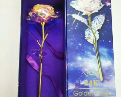 Hyperboles Glowing Electric  24 K Golden Rose