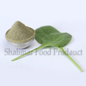 Green Spinach Powder, Packaging Size: 25 Kg