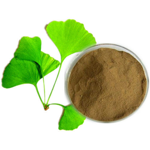 Ginkgo biloba extract flavone glycosides at rs 2500 kilogram ginkgo biloba extract flavone glycosides thecheapjerseys Gallery