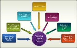 Working Capital Finance Services