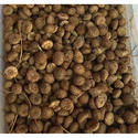 Dehydrate Akarkara Seeds
