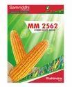 Samriddhi Mm 2562 Hybrid Maize Seeds