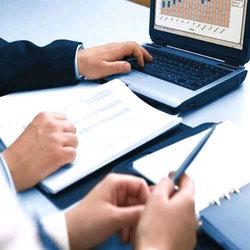 Individual Consultant Banking and Finance Statutory Compliances