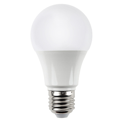 Cool White Round LED Bulb