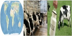 Milk Distribution & Dairy Management Billing Software