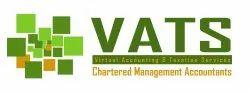 Virtual Accountant Service